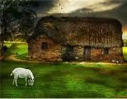 Auld Scotland
