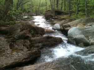 Taken by Susan Bahr near Underhill, Vermont