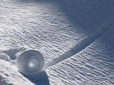 Snow Rollers 6